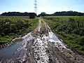 Farm track and footpath near West Acre - geograph.org.uk - 589704.jpg