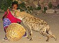 Feeding the Hyenas - Outside Walls of Old City (Jugal) - Harar - Ethiopia - 01 (8754059332).jpg