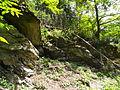 Felsen in der Dehl (Hoch-Weisel) 12.JPG