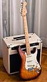 Fender American Standard Stratocaster + Ibanez TSA30 (by Christian Mesiano).jpg
