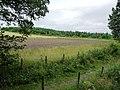 Field alongside the railway - geograph.org.uk - 1985641.jpg