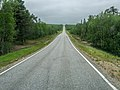 Finland-National road 4-P1290323.jpg