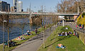 First warm Sunday of the year - At the river Main in Frankfurt - Germany - March 25th 2012 - 04.jpg