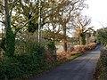 Fishponds Lane towards Holbrook - geograph.org.uk - 1602754.jpg
