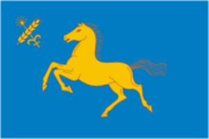 Duvansky District - Image: Flag of Duvan rayon (Bashkortostan)