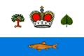 Flag of Vashkinsky rayon (Vologda oblast).png