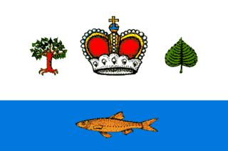 Vashkinsky District District in Vologda Oblast, Russia