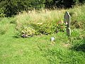 Flowers beside a grave at St Edith, Eaton - geograph.org.uk - 1446275.jpg