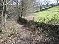 Footpath in Rivelin Valley Nature Reserve - geograph.org.uk - 1760886.jpg