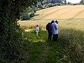 Footpath near Up Marden - geograph.org.uk - 428229.jpg