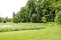 Forest Park, Springfield, MA 01108, USA - panoramio (47).jpg