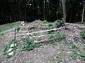 ForestcastleVelkySaris13Slovakia.JPG