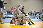 Fort Campbell Combatives Level 3 MTT 120131-A-ZW716-636.jpg