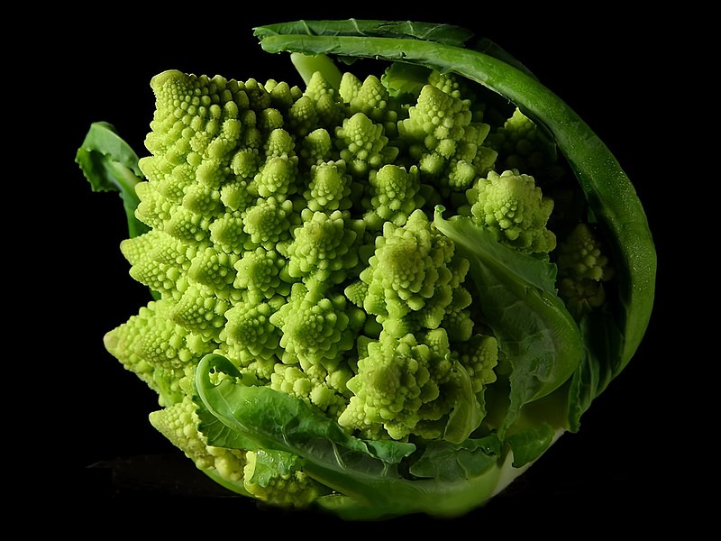 Romanesco broccoli - One of many examples of fractals in nature. (Wikipedia)