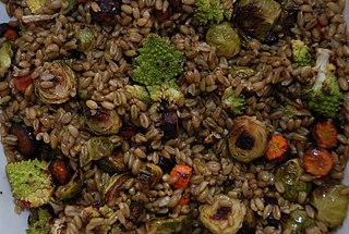 Cereal food made from green durum wheat