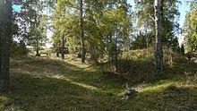 Photo d'un terrain boisé