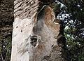 Gërmadhat e Kishës Sakse, Stan Tërg - 4.jpg