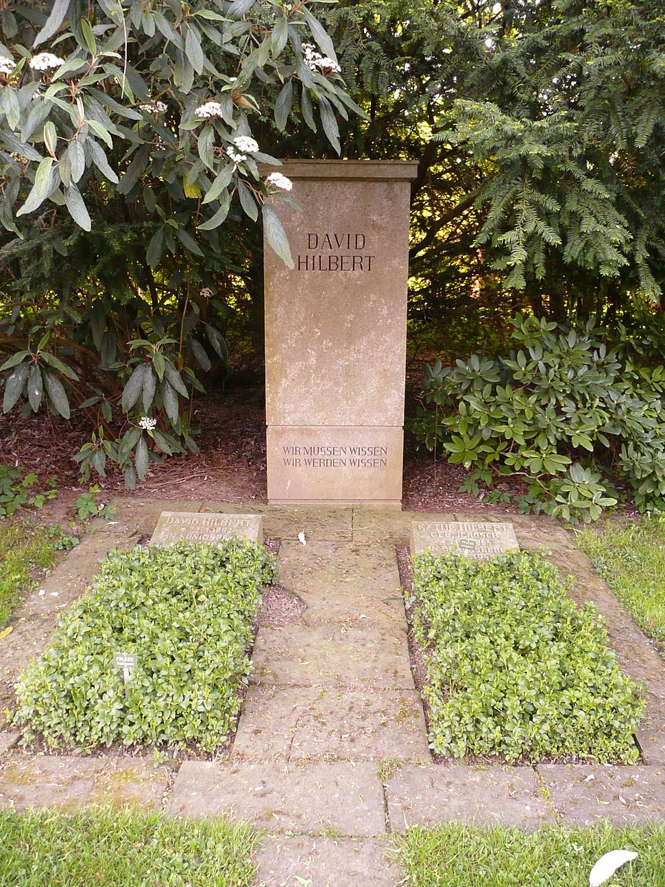 Göttingen Stadtfriedhof Grab David Hilbert