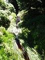 Główny Szlak Sudecki - panoramio (3).jpg