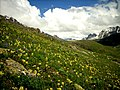 GB Deosai National Park -9.jpg