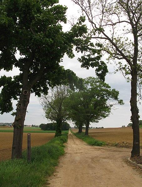 GR5-wandelpad (richting Scherpenheuvel)