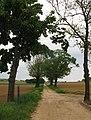 GR5-wandelpad (richting Scherpenheuvel) - panoramio.jpg