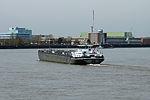 Galiya (ship, 2009) 005.JPG