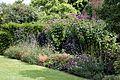 Garden border at Goodnestone Park Kent England 1.jpg