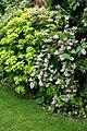 Garden shrub border at Boreham, Essex, England 01.jpg