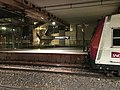 Gare RER Pont Garigliano Paris 3.jpg
