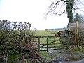 Gate, Tosca - geograph.org.uk - 1808374.jpg