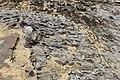 Geologia do Parque Nacional Serra da Capivara (9578).jpg