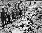 German civilians view victims of Holocaust death march.jpg