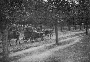 Osowiec Fortress - German officer taken prisoner in Osowiec fortress, 1914