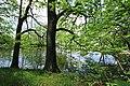 Geschützter Landschaftsbestandteil Schubertgrund in Sachsen.2H1A1385WI.jpg