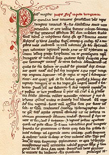 Una pagina da un vecchio codice che presenta un gran iniziale verde P decorato con viticci