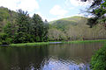 Gfp-pennsylvania-sinnemahoning-state-park-stream-view.jpg