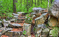 Gfp-wisconsin-rib-mountain-state-park-rocks-and-stairs.jpg