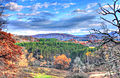 Gfp-wisconsin-wildcat-mountain-state-park-autumn-forests.jpg