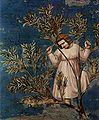 Giotto di Bondone 014.jpg