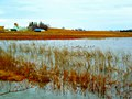 Goose Pond Sanctuary - panoramio.jpg