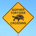 Gopher Tortoise Crossing - Road Sign in Sanibel Island, Florida, USA.png