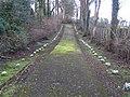 Gracehill - avenue to graveyard - geograph.org.uk - 342196.jpg