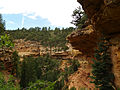Grand Canyon. Cliff Spring trail. 03.jpg