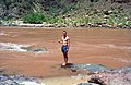 Grand Canyon 00570 n 7ab88k78v227 (2540082995).jpg