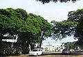 Green city - panoramio.jpg