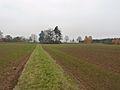 Greifenberg Limburg1.jpg