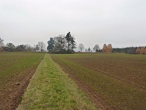 Battle of Limburg (1796) - Remains of the Austrian redoubt outside Limburg