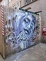 Groningen - Muurschildering met vrouwenhoofd.jpg
