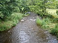 Gryfe Water from Netherwood Bridge - geograph.org.uk - 1411383.jpg